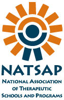 NATSAP logo words